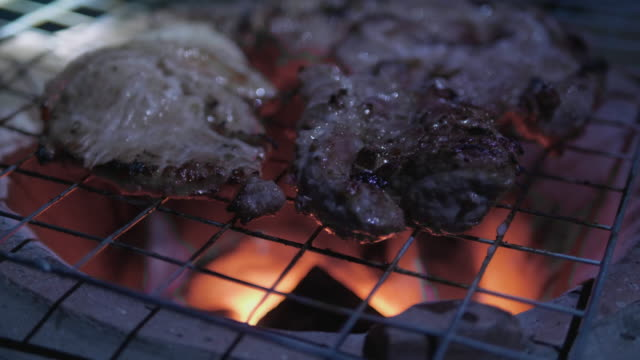 an intimate view of the barbecue pork on the stove - woodland stock videos & royalty-free footage