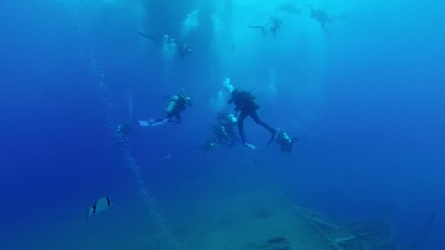 An iron and steel colossus that sank on a summers night 35 years ago off Cyprus is now considered one of the worlds best shipwreck dives
