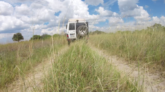 POV, WS An off-road vehicle drives through grassland