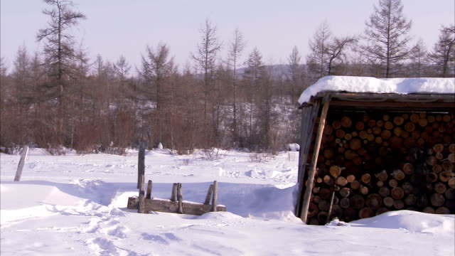 an off-road vehicle passes a firewood shelter in a remote siberian village. available in hd - firewood stock videos & royalty-free footage