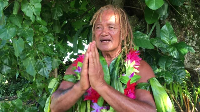 an old aged pacific islander man praying under a rain forest tree - polynesian culture stock videos & royalty-free footage