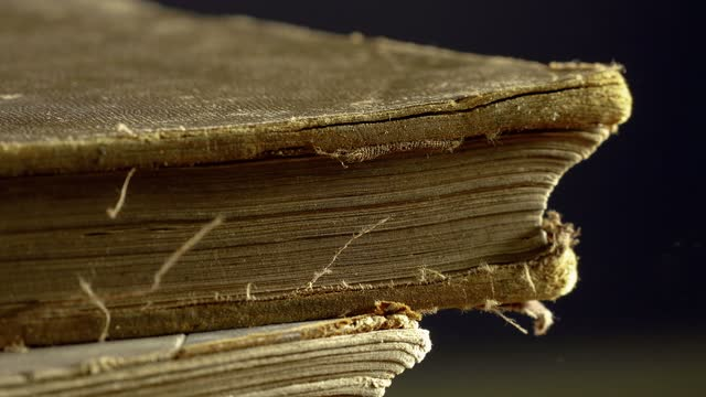 an old book's cover closes violently - book cover stock videos & royalty-free footage