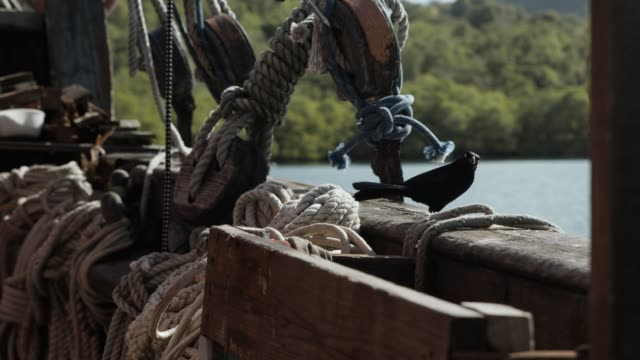 vidéos et rushes de an old historic sailing ship  in the caribbean - french overseas territory