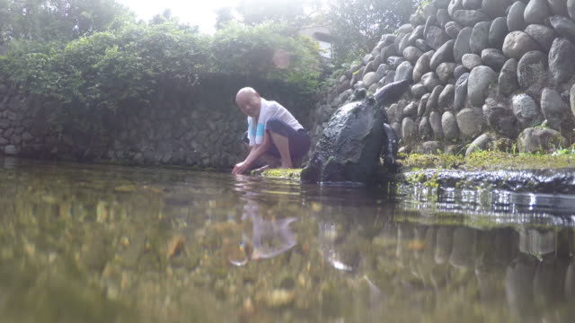 an old man and his lovely turtle - ishikawa prefecture stock videos and b-roll footage