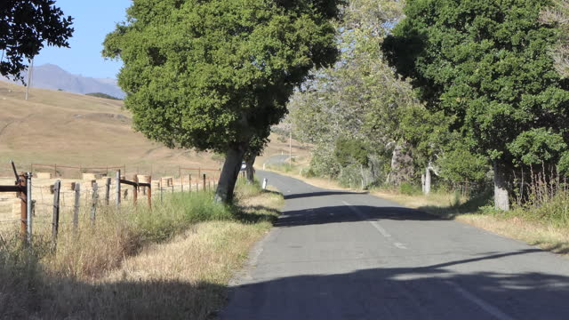 an old rural road in california, united states on june 01, 2021. - tranquil scene stock videos & royalty-free footage