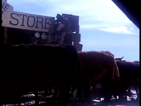 an old west shop owner tries to fix his storefront sign and falls off a ladder into the mud as a cattle drive comes through town. - cattle drive stock videos & royalty-free footage