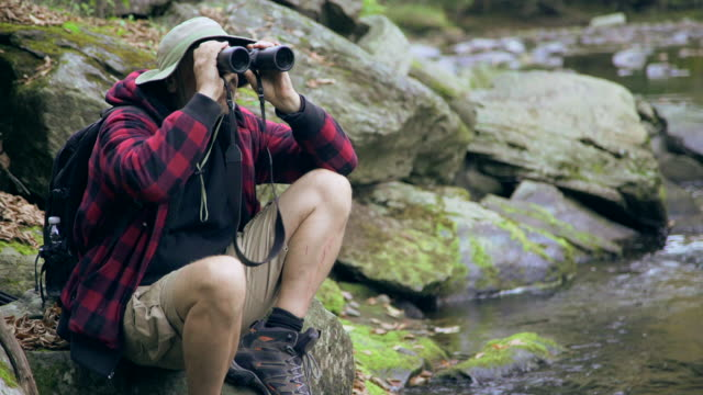 an older hiker resting by a creek in a scenic forest in the mountains. - binoculars stock videos & royalty-free footage