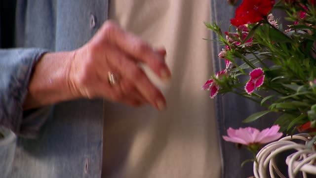 vidéos et rushes de an older woman rubs her stiff, arthritic hands after touching the buds on a potted plant. - arthrite