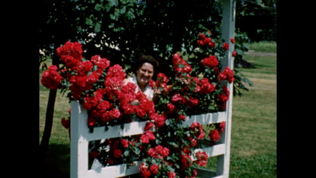 an older woman smiles behind a lattice of roses in her garden. - 1950年点の映像素材/bロール