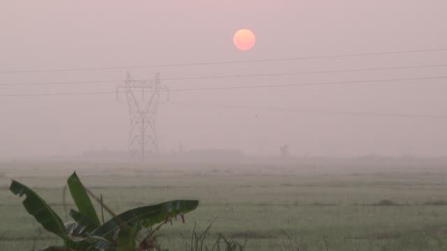 an orange sun is seen rising over transmission towers and power lines standing over rice fields shrouded in fog at dawn in yangon myanmar on tuesday... - biological process stock videos & royalty-free footage