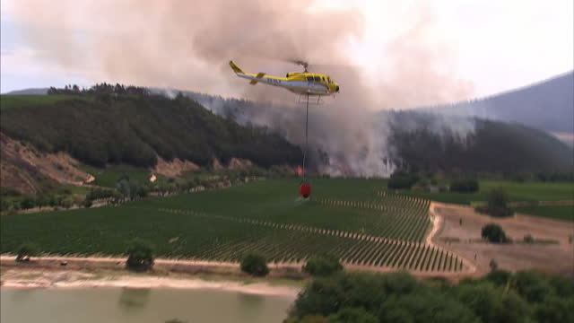 an outbreak of bush fires is threatening to wipe out some of south africa's most famous vineyards sky news alex crawford and cameraman garwen... - stellenbosch stock videos and b-roll footage