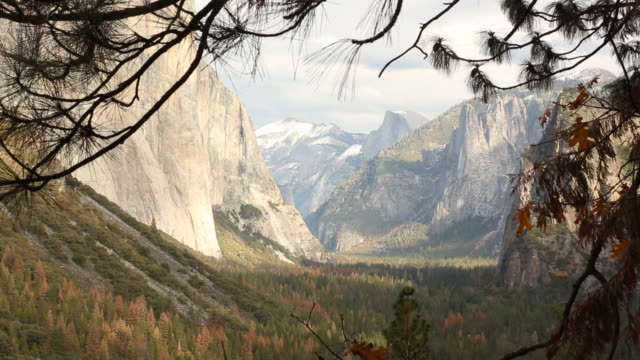 an outdoor scene of yosemite national park during the fall season with sun shining. - mariposa county stock videos and b-roll footage