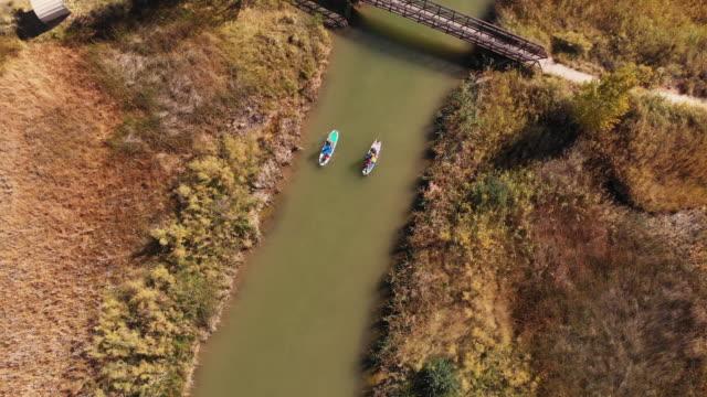 ein overhead luftaufnahme eines kaukasischen paares stand up paddleboards mit kindern einen grün-fluss entlang zu paddeln - schwimmweste stock-videos und b-roll-filmmaterial