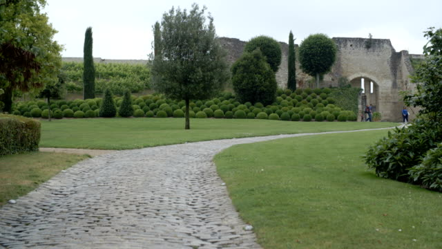 An ultra-wide shot of a historical french garden