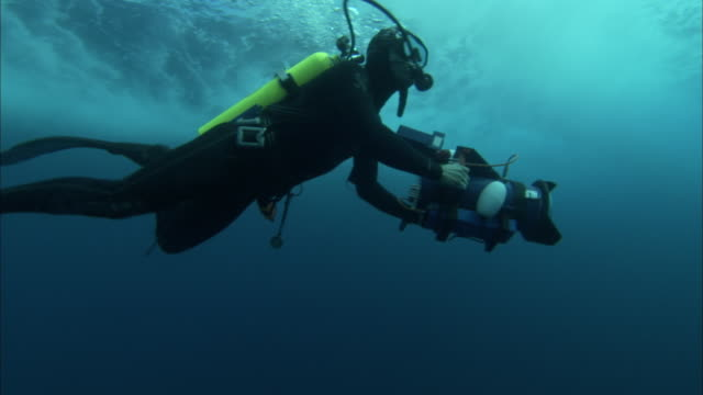 an underwater photographer explores near the surface of the ocean. - diving flipper stock videos & royalty-free footage