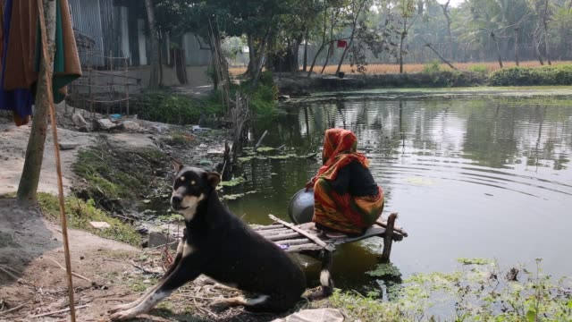 An women working in pond near Sundarban at Dacope Upazila in Khulna District Bangladesh on January 21 2018 The Sundarbans which means 'beautiful...