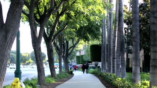 vidéos et rushes de jardins et plantes d'anaheim - anaheim californie