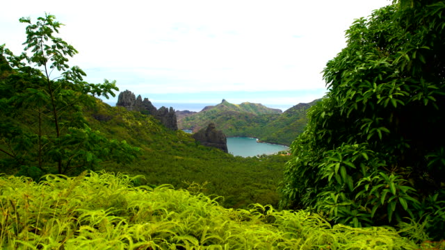 anaho nuku hiva ocean bay lush vegetation marquesas - polynesian ethnicity stock videos and b-roll footage