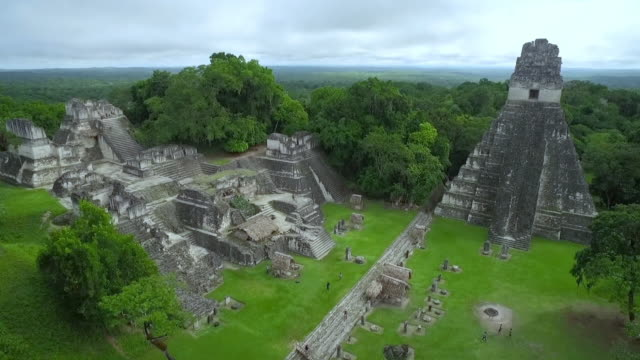 ancient city in the rain forest - yucatan stock videos & royalty-free footage