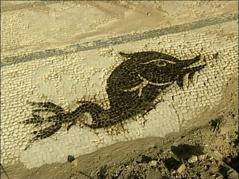 ancient dolphin mosaic, greece - mosaic stock videos and b-roll footage