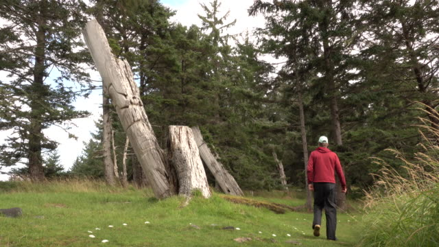 stockvideo's en b-roll-footage met oude haida skedans dorp totem poles haida gwaii british columbia canada bezoeker - wildreservaat