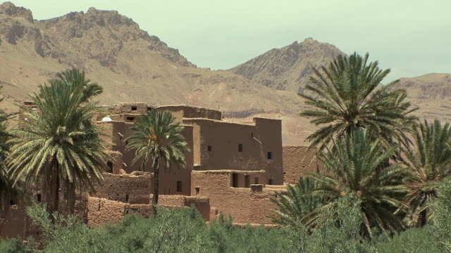WS Ancient Kasbah and palm trees, El Kaala Mgouna, Morocco