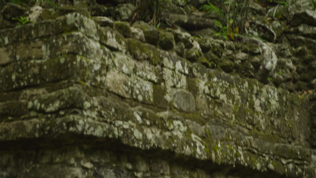 """Ancient Mayan ruin in forest, Calakmul, Mexico"""