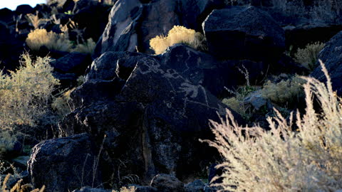 ancient native american petroglyph: three rivers petroglyph site: new mexico: usa - puebloan culture stock videos & royalty-free footage