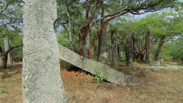 ms ancient overgrown, unnamed ruins near mirisavatiya dagoba / anuradhapura, north central province, sri lanka - sri lankan culture stock videos and b-roll footage