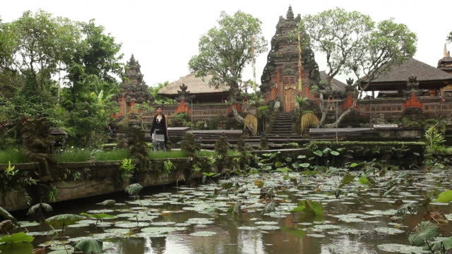 ws ancient temple with pond with water lilies in foreground / bali, indonesia - 溜水点の映像素材/bロール