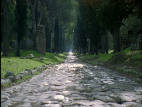 ancient tree-lined roman cobbled road rome - roman stock videos and b-roll footage