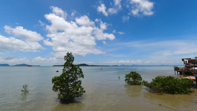 andaman sea summer time lapse - wispy stock videos & royalty-free footage