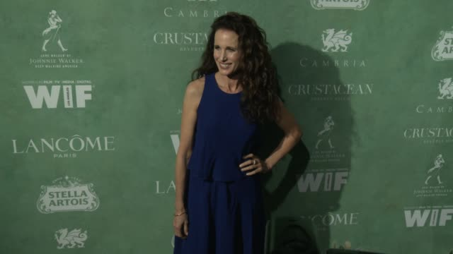 andie macdowell at the 11th annual women in film pre-oscar cocktail party at crustacean on march 02, 2018 in beverly hills, california. - andie macdowell stock videos & royalty-free footage