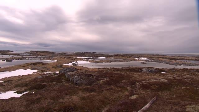 andoya island in norway - 地衣類点の映像素材/bロール