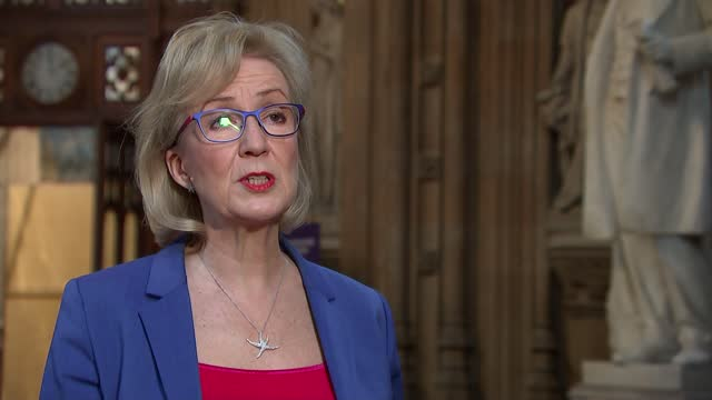 andrea leadsom interview; england: london: westminster: house of commons lobby: int andrea leadsom mp interview sot q: on the purpose of the 'start... - diminishing perspective stock videos & royalty-free footage
