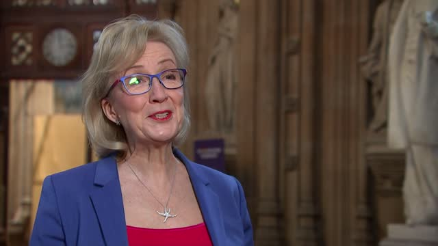 andrea leadsom interview; england: london: westminster: house of commons lobby: int andrea leadsom mp interview sot q: confident of treasury backing?... - stretching stock videos & royalty-free footage