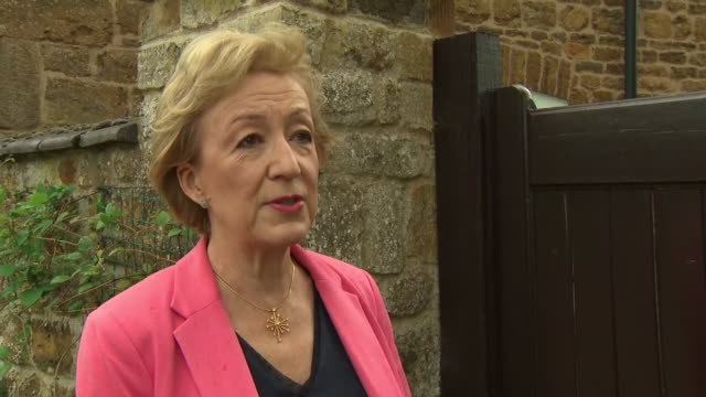 """andrea leadsom saying she has a """"three-point plan for brexit and i'm very optimistic about it"""" - small group of objects stock videos & royalty-free footage"""