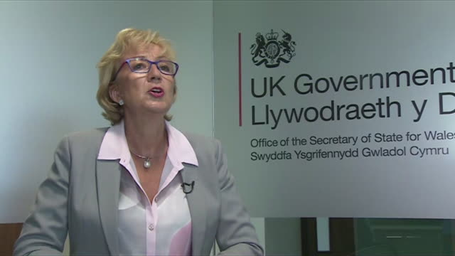 andrea leadsom saying she will do everything in her power to prevent undemocratic mp's from preventing the democratic will of the people and blocking... - parlamentsmitglied stock-videos und b-roll-filmmaterial