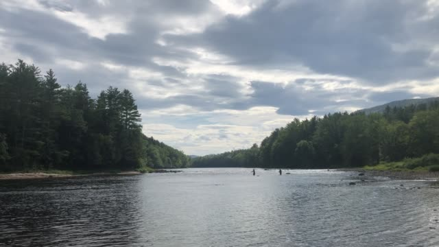 androscoggin river in hanover, maine usa with fly fisherman fishing for trout - new england usa stock videos & royalty-free footage