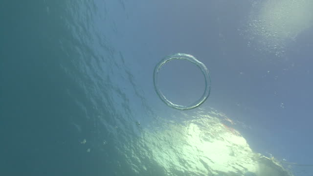 andy blowing bubble ring, red sea, egypt - ring stock videos and b-roll footage