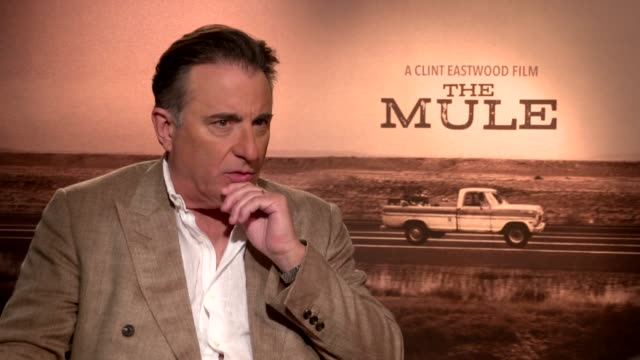 andy garcia talks about the mule film directed by clint eastwood - maultier stock-videos und b-roll-filmmaterial