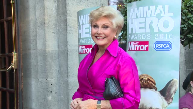 angela rippon at grosvenor house, on september 07, 2016 in london, england. - angela rippon stock videos & royalty-free footage