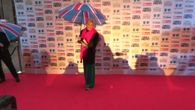 angela rippon at grosvenor house on september 30, 2019 in london, england. - angela rippon stock videos & royalty-free footage