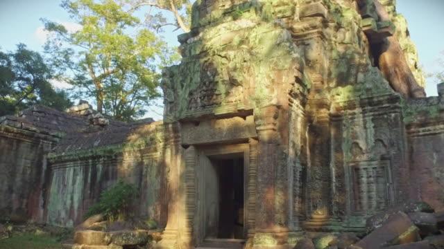 vidéos et rushes de angkor wat ta prohm temple entrance cambodge vidéo 4k walk - mousse végétale