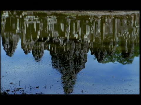 ms, tu, angkor wat temple by moat, angkor, cambodia - moat stock videos & royalty-free footage