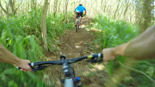 pov angle of man mountain biking through woods - turtle bay hawaii video stock e b–roll