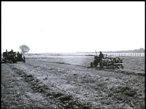angled ws alfalfa field w/ two tractors one moving down gathering crop cut by other vs harvesting crop ms scooping cut alfalfa ws scooper moving down... - pazifikküste stock-videos und b-roll-filmmaterial