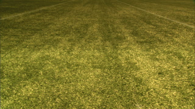 tu angled ws just above yard line marker on turf dolly left passing two yard line marks to half way between two yard lines td ms boundary line no... - yard measurement stock videos and b-roll footage