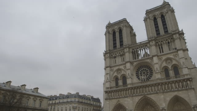 Angled view of birds flying around the facade of Notre Dame de Paris on the Île de la Cité, France.