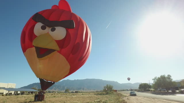 angry bird was asking help from bystanders to pack up itself the owner frank wechter is from albuquerque nm usa a local citizen - albuquerque new mexico stock videos & royalty-free footage